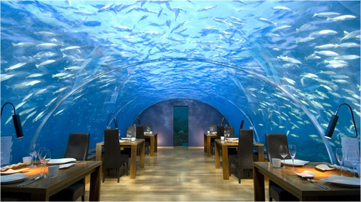The Ithaa Undersea Restaurant. It looks absolutely beautiful.